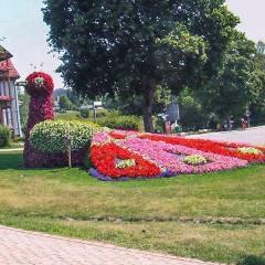 Blumenpfad im Ort Schluchsee